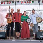 Ardud / Festival Medieval